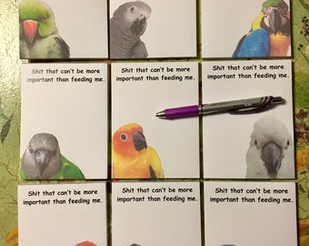 """New Item! 4 x 5.5"""" notepads with 9 different parrot species to choose from! 50 page count"""
