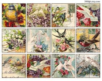 birds carte postale postcard Vintage Printable Tags Digital Collage Sheet 2.5 inch square images Download and Print
