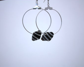 Shell Earrings Hawaii Jewelry Sea Shell Earrings Beach Jewelry Shell Jewelry Seashell Jewelry Seashell Earrings Hawaiian Jewelry Ocean 064