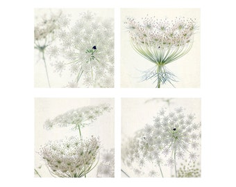 Four Queen Anne's Lace Print Set, White Floral Art Print,  Flower Photography, Housewarming Gift, Cottage Chic Decor, Nursery Decor