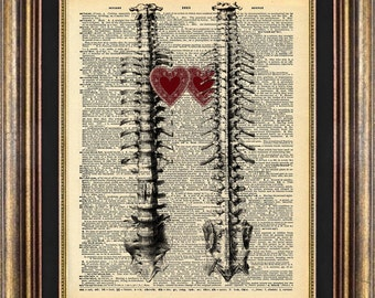 Spine LOVE Skeleton Bones Heart  Medical Dictionary Page ORIGINAL art print book page art print up cycled