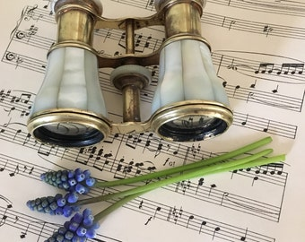Victorian Mother of Pearl Opera Glasses, English Opera Glasses, Antique Opera Glasses, Brass, Decorative, Collectible