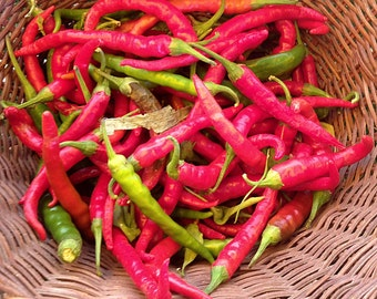 Joe's Long Cayenne Chili Hot Pepper Seeds Heirloom 30+ Seeds Naturally Grown Open Pollinated Gardening