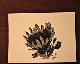 Protea Flower Watercolour