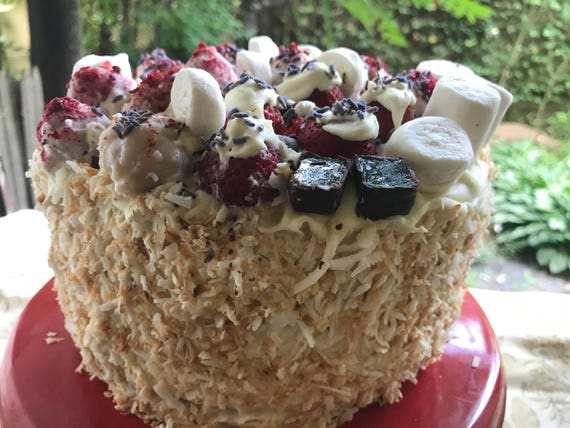 Vegan Silly Vanilla Coconut Marshmallow Raspberry birthday cake plus chocolate fruit jellies,no eggs,no dairy.
