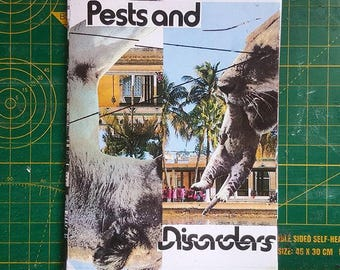 Zine #3 (Pests and Disorders)