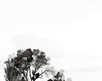Art Photography: WELD COUNTY RD, black and white photography, country photography, farm photography, country decor, barn photography, barns