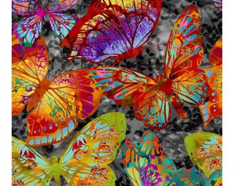 Dreamscape II Butterfly Print - Butterfly Wing - Jason Yenter In The Beginning - 1JYH1 Gray - Priced by the 1/2 yard