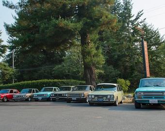 Datsun Row, Landscape Photography, Metal Print, Large Prints, Humboldt County CA, Classic Cars, Sunsets, DJerniganPhoto