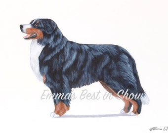 Bernese Mountain Mt. Dog - Archival Fine Art Print - AKC Best in Show Champion - Breed Standard - Working Group - Original Art Print