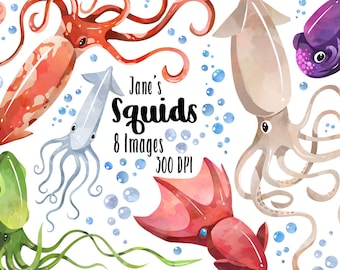 Watercolor Squids Clipart - Squid Download - Instant Download - Sea Creatures - Marine Life - Bubbles - Kraken - Commercial Use