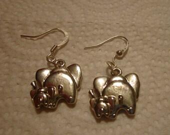 Elephant Bums Silver Earrings