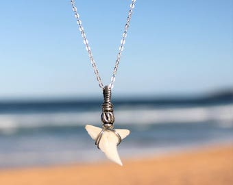 Natural Real Australian Sharks Tooth Necklace // Beach Jewelry // Mermaid Necklace // Shark Tooth Pendant // 14kt Gold Filled