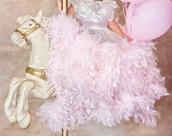 Ballsaal-lizenzfreie... Ein exquisites Kleid Kristalle, Federn und Spitzen... In Ihrer Feder-Farbauswahl erhältlich