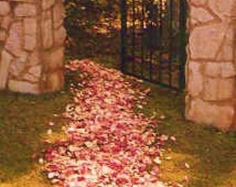 ROSE PETALS, 100 Cups, Wedding Confetti, Petal Toss, Bridal Paths, biodegradable Petals, dried Rose Petals, for fairy tale endings