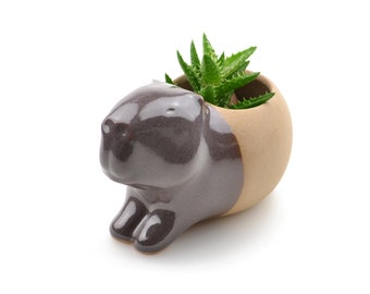 Cute ceramic capybara planter - brown - made in Brazil