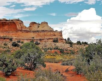 Utah Desert