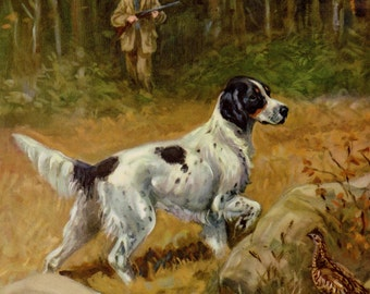 Vintage ENGLISH SETTER Dog Print English Setter Art Beautiful Hunting Lodge Cabin Decor 1950s Gallery Wall Art Home Library Decor 3654