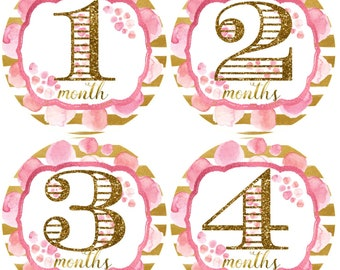 Baby Girl Monthly Stickers Girls 1st Year Stickers Pink and Gold Glitter Milestones Baby Months Stickers