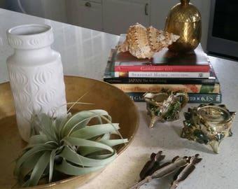 Vintage shell creamer and sugar set | Sugar bowl | Mid century | Cream & sugar set | Natural decor | shells | Florida | tea set | tea lovers
