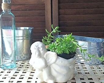 Ceramic Cherub Planter Small Perfect for a Succulent