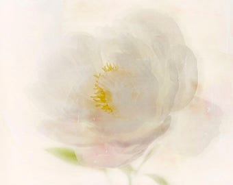 Peony Photograph,  Flower Photography, Floral Art Print, Pale Pink Flower Wall Art, Romantic Bedroom Decor