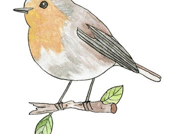 Spring Robin- Nature Illustration- Bird Art- Instant Download- Watercolor