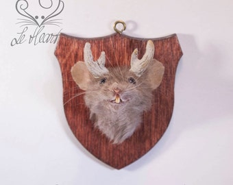 Taxidermy Mouse Head Mount - Highland Mouselope