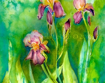 Iris painting, watercolor Painting, 5 x 7 Giclee print, Floral painting, cottage decor, landscape painting, spring green,