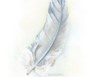 Gray Feather Watercolor Painting Fine Art Print 8 x 10 (8.5 x 11) - Bird Art