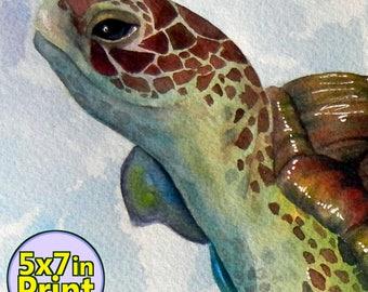 Sea Turtle Print 5x7