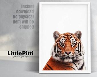 Tiger print, safari nursery decor, nursery printable, tiger wall art, safari nursery print, tiger photo, safari animals, animal art print