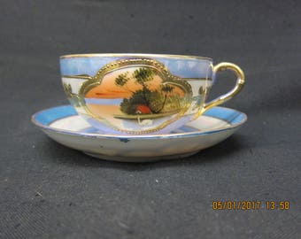 Hand Painted in Japan Cup and Saucer