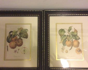 Vintage Pair of Wooden Framed Art Pictures Wall Plaques  Set of 2 Framed Prints Farmhouse  Shabby Chic Frames