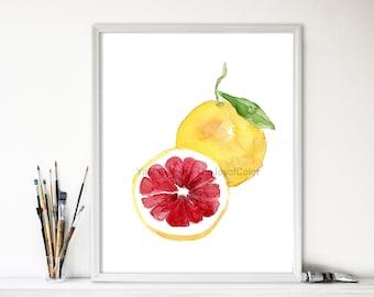 Pink grapefruit art print, watercolor painting, citrus art , Botanical Study, Kitchen art, minimalist print, bright colors, home decor