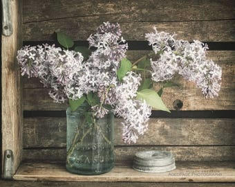 Lilac Flower Photography, Floral Wall Art, Rustic Farmhouse Kitchen Art, Botanical Print, Bathroom Wall Decor, 'Spring's Pastels'