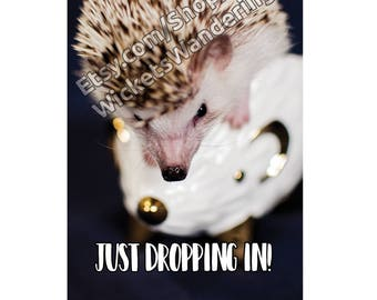 hedgehog Hello card
