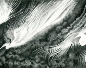 Descent - Limited Edition Fine Art Print