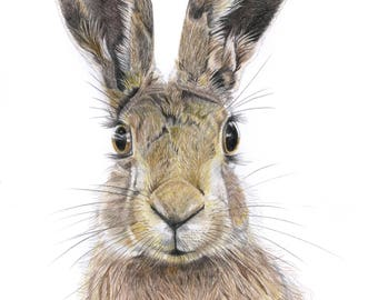 Hare Print.