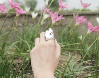 April , Rabbit Ring