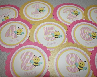 SWEET BEE Baby's 1st Year Tags / Bee 1st Year Tags / Bee First Year Tags / Bee Monthly Photo Tags / Bee Birthday Party / Bumble Bee Birthday