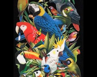 New 2 T-Shirt Bundle Birds Dolphins Wildlife Animal Men Women