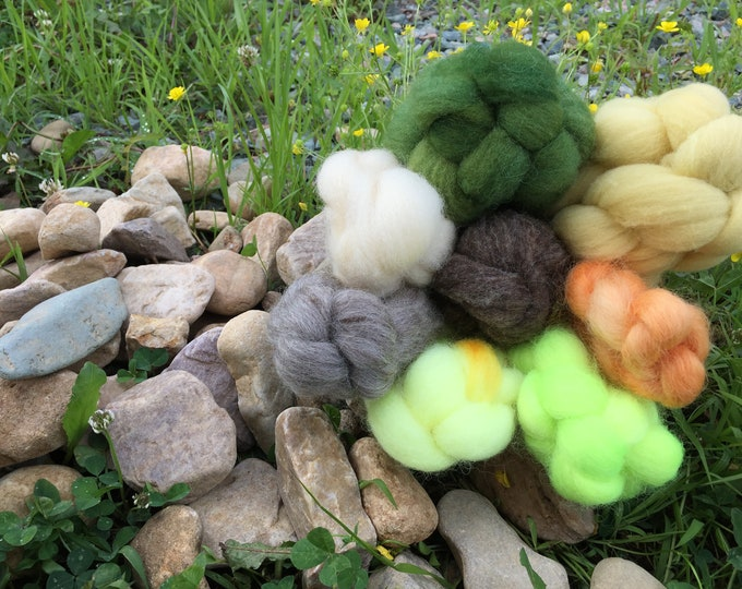 Sunflower - Breed Study With a TWIST - Spinning Fiber