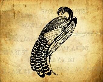 Vintage Peacock Clipart Lineart Illustration Instant Download PNG JPG Digi Line Art Image Drawing L216