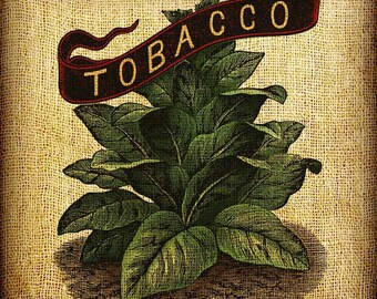 Tobacco Leaves Plant Full Color Vintage Image Transfer Download Pillows Totes Bags Napkins Towels
