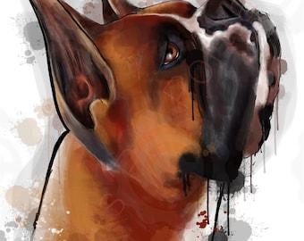 Boxer art