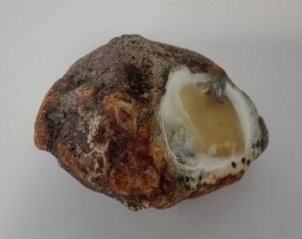 White Baltic Natural Stone 40.8 Grams