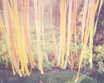 Vintage Ribbons photograph - wedding altar - 8x10 photograph - California fine art print - wedding gift