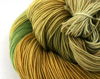 Esopus Hand Painted 100% SW Merino 500yds 4oz Toad Hall