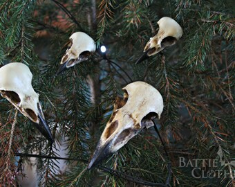 Corvidae collection raven crow magpie jackdaw bird skull goth decor gothic decorations halloween ornaments